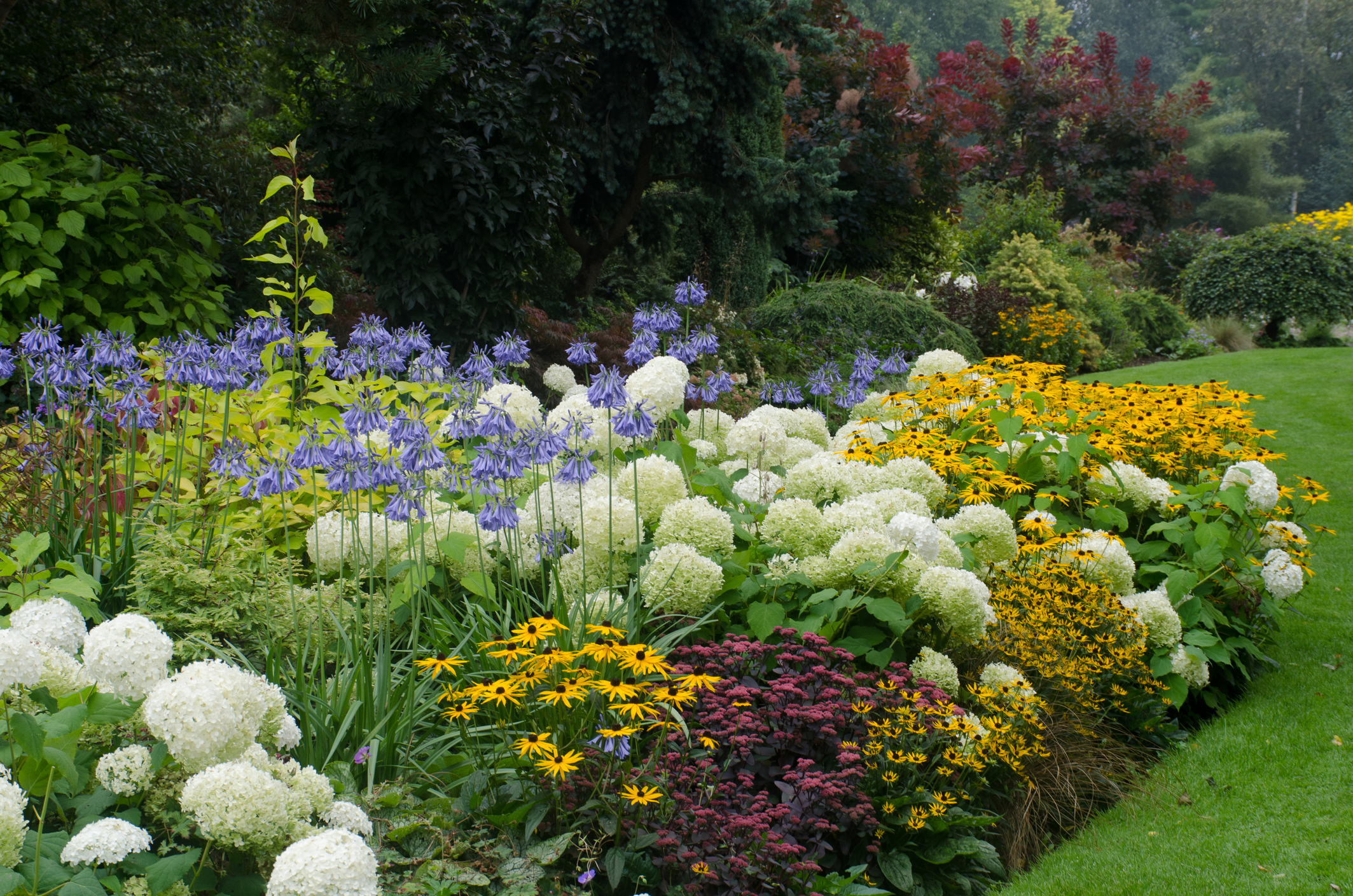 How To Plant The Perfect Perennial Garden Natorps