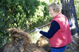 Straw Bale Gardening in Cincinnati, Ohio